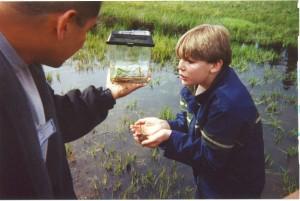 AAA Pond Life 1