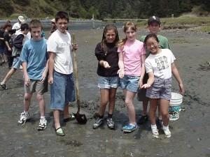 Albion   mudflat 3